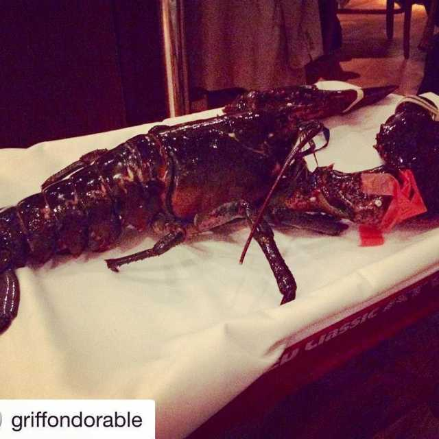 Repost griffondorable with repostapp  This guy lobstersofinstagram newyorkprime bigredhellip